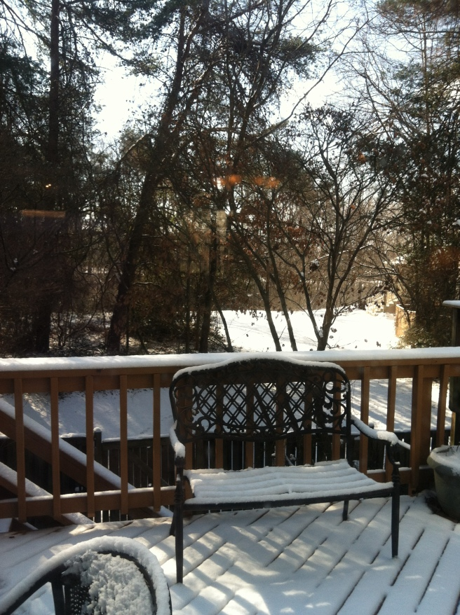 Morning snow on the back deck at Little E's house!
