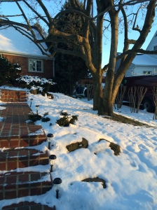 The sunset reflecting on the snow in the front yard